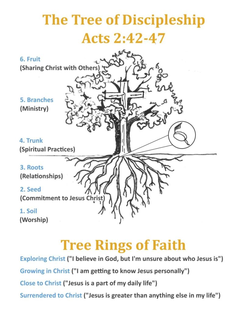 Discipleship-Tree-and-Tree-Rings-of-Faith
