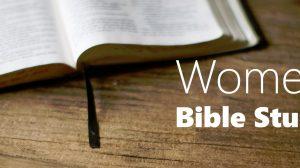 New Shabby Sheep Women's Bible Study
