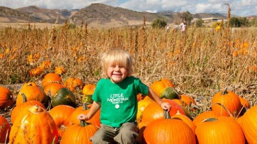 Join FPCL Children's Ministry at the Chatfield Botanic Gardens