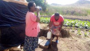 Zimbabwe Photo 2